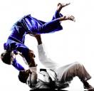 Brazilian Jiu Jitsu  von 20.30-21.30 Uhr